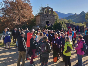 Caminada en benefici de la Marató de TV3